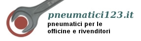 pneumatic123